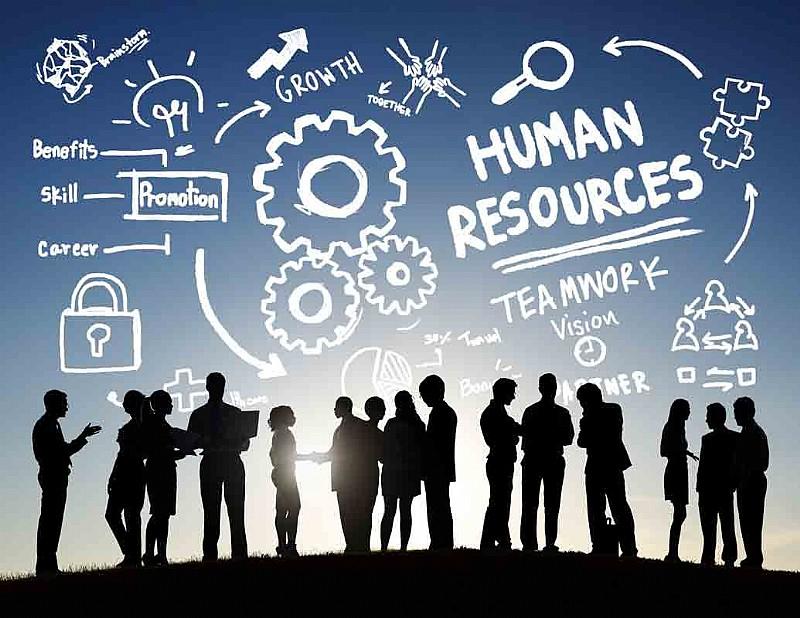 İnsan Kaynakları Yönetimi ve Açık Sistem Yaklaşımı