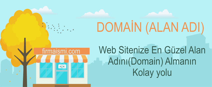 Domain (Alan Adı)